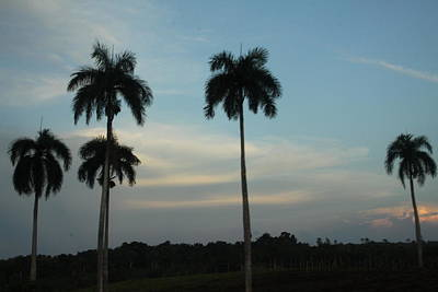 Photograph - Dominican Evening Sky by Mustafa Abdullah