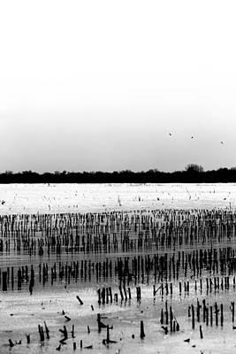 Photograph - Dominoes by Edgar Laureano