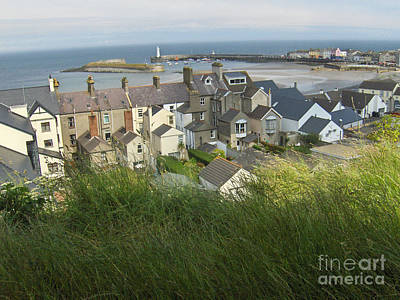 Donaghadee Northern Ireland View From The Moat Art Print