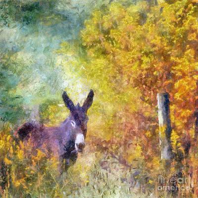Railroad - Donkey At The Fence  by Kerri Farley