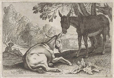 1636 Drawing - Donkeys, Anonymous, Herman Van Swanevelt by Anonymous And Herman Van Swanevelt
