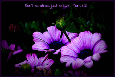 Photograph - Dont Be Afraid by Kathy Sampson