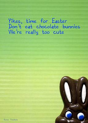 Photograph - Don't Eat Chocolate Bunnies by Renee Trenholm