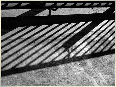 Art Print featuring the photograph Don't Fence Me In by Luc Van de Steeg
