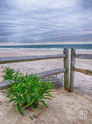 Jersey Shore Photograph - Don't Fence Me In by Mark Miller
