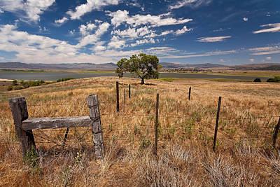 Barbed Wire Fences Photograph - Don't Fence Me In by Peter Tellone
