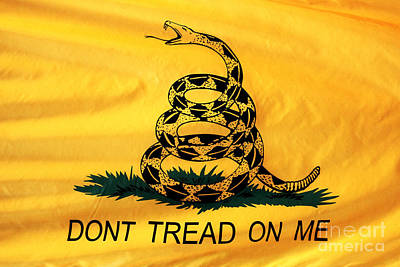 Don't Tread On Me Print by John Rizzuto