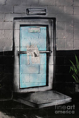 Photograph - Door Cat  by Ethna Gillespie
