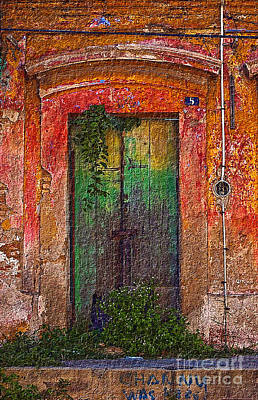 Photograph - Door Series - Green by Susan Parish