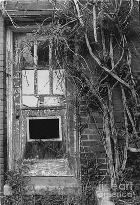 House Of Detention Photograph - Door With Vines by Michelle OConnor