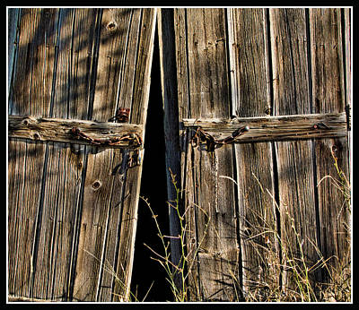 Photograph - Doors by Ron Roberts