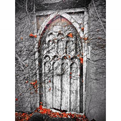 Photograph - Doorway In Cork by Maeve O Connell
