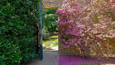 Photograph - Doorway To Paradise by Denise Mazzocco