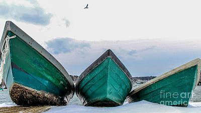 Surfing Maine Photograph - Dories And The Sea Gull by Joe Faragalli
