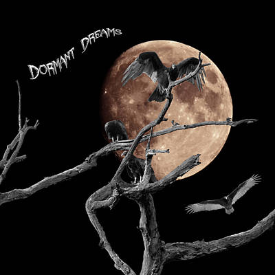 Photograph - Dormant Dreams 3 by David Lester