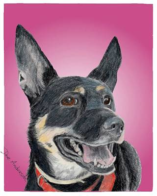 Animal Shelter Drawing - Dotty - A Former Shelter Sweetie by Dave Anderson