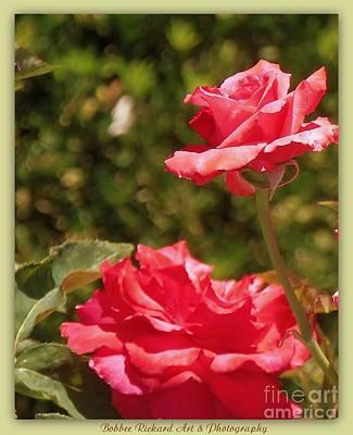 Photograph - Double Beauty Roses by Bobbee Rickard