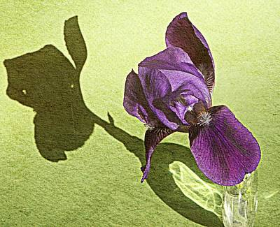 Photograph - Double Bloomer by Chris Berry