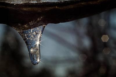 Photograph - Double Burst by Dawn Hagar