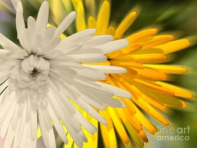 Photograph - Double Dahlia Yellow by Joan-Violet Stretch