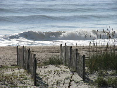 Photograph - Double Dune Fence by Ellen Meakin