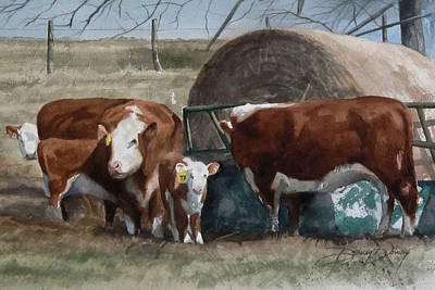 Steer Painting - Double F Cows by Denny Dowdy