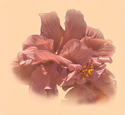 Double Hibiscus Portrait Art Print