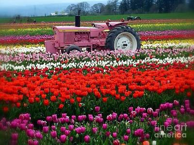 Photograph - Double John Deere Tulips by Susan Garren