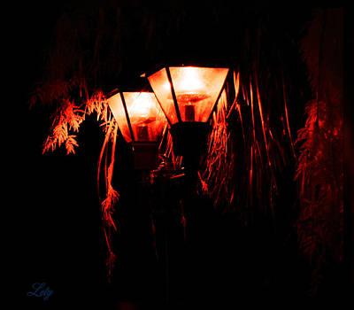 Photograph - Double Light by Leticia Latocki