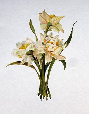 Painting - Double Narcissi Spring Flower Bouquet  by Taiche Acrylic Art