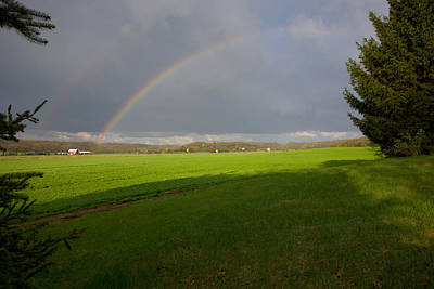 Photograph - Double Rainbow by Bernard Lynch