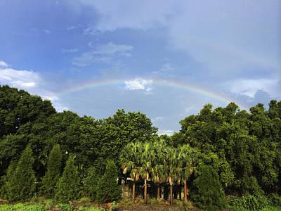 Photograph - Double Rainbow St. Pete Fl by Nicki La Rosa