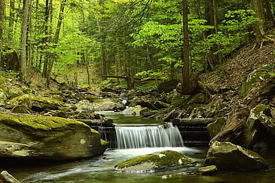 Photograph - Double Run #1 - Worlds End State Park by Joel E Blyler
