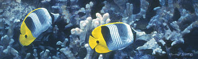 Double Saddleback Butterflyfish Art Print by Randall Scott
