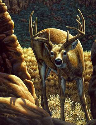 Stag Painting - Whitetail Buck - Double Take by Crista Forest