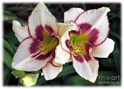 Double The Bloom Art Print by Elizabeth Winter