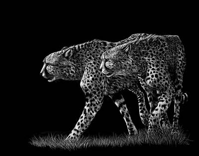 Cheetah Drawing - Double Trouble by Heather Ward