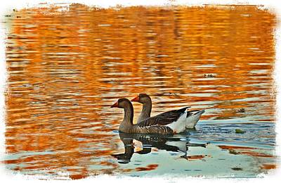 Art Print featuring the photograph Doubles by Lynn Hopwood