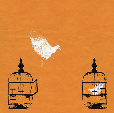 Trapped Digital Art - Dove Escaping Birdcage And Bird Trapped by Katie Edwards