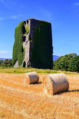 Poer Photograph - Dove Hill Castle by Joe Cashin