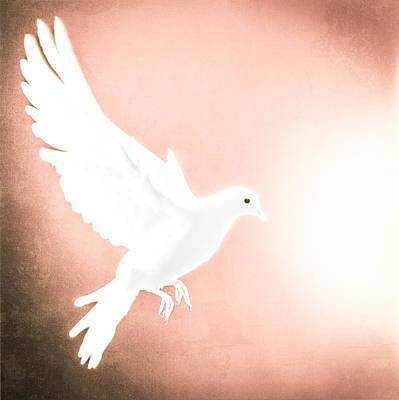 Dove Photograph - Dove In Flight Red by Yo Pedro