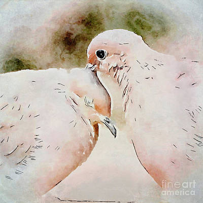 Photograph - Dove Love Art by Kerri Farley