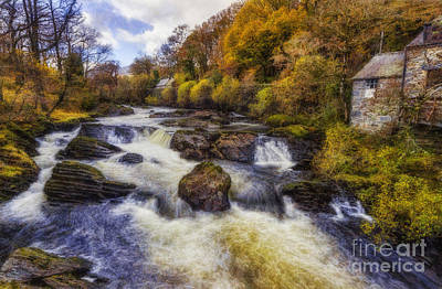 Lush Colors Photograph - Down By The River by Ian Mitchell