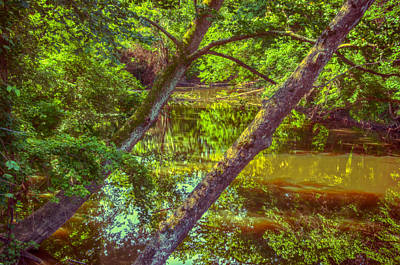 Photograph - Down By The River Side by Gene Sherrill
