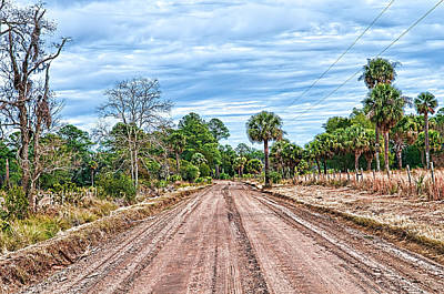 Photograph - Down Chisolm Island Road by Scott Hansen