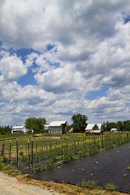Ethridge Photograph - Down On A Amish Farm by Kathy Clark