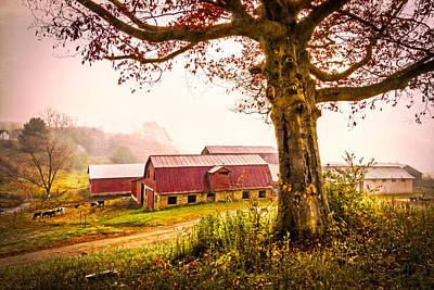 Down On The Farm Art Print by Debra and Dave Vanderlaan