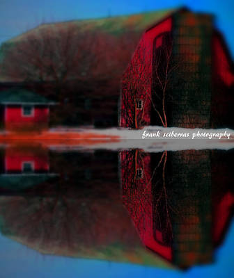Photograph - Down On The Farm by Frank Sciberras