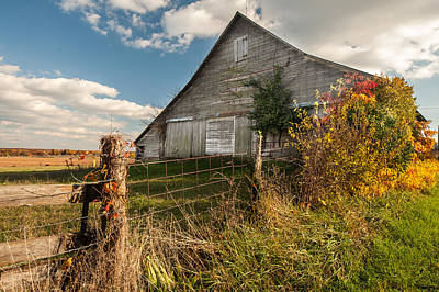 Photograph - Down On The Farm by Gregory Ballos