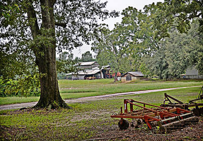 Photograph - Down On The Farm by Linda Brown